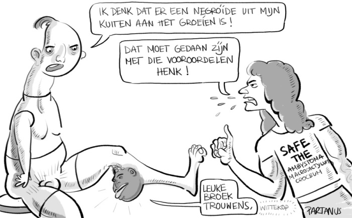 "cartoon ""strakke broek"" neger negroide kuit greenpeace links ""politieke correctheid"""